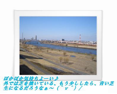 1(2).jpg