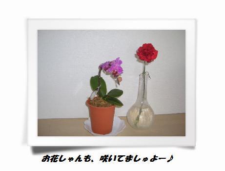 A(4).jpg
