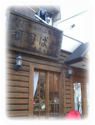hanami-4.jpg