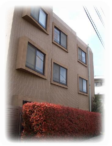 hanami-M.jpg