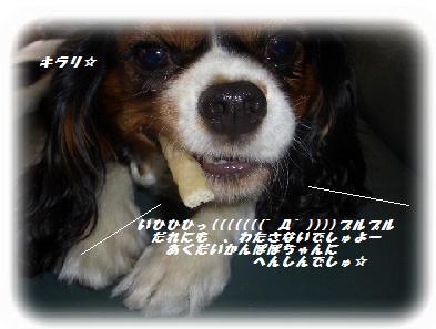 okasi-2.jpg