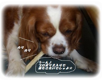 okasi-3.jpg