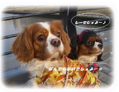 takarakuji-J(1).jpg